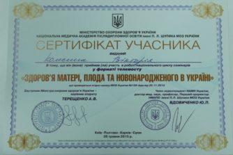 Колесник Виктория Леонидовна - сертификат-документ10
