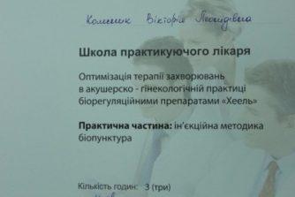 Колесник Виктория Леонидовна - сертификат-документ17