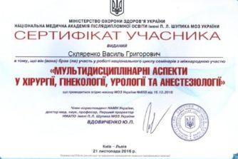 скляренко сертификат 9